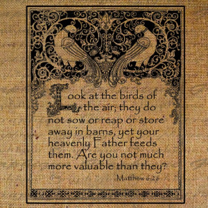 Look At the Birds Framed Bible Quote Bird Matthew 6 verse 26 Digital ...