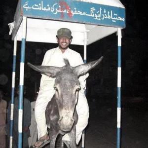 funny punjab collage bus urdu quote