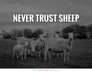 Never trust sheep Picture Quote #1
