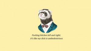 Animals funny quotes spelling error mistakes wallpaper