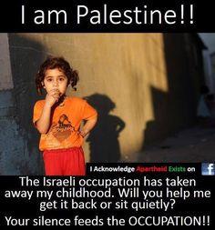 free palestine more free palestine mistreated palestinian human rights ...