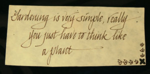Sayings, Poems and Quotes in Calligraphy