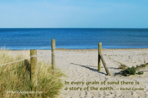 In every grain of sand there is a story of the earth.