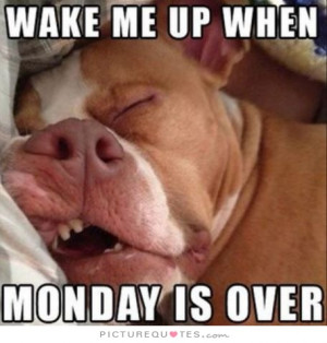 Wake me up when Monday is over Picture Quote #1