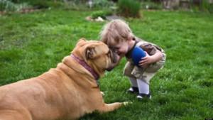 THINGS-DOGS-TEACH-US-facebook.jpg