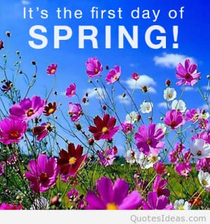 First day of spring quotes wallpapers and flowers photos