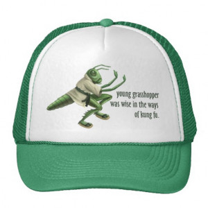 Funny Kung Grasshopper Trucker Hats From Zazzle