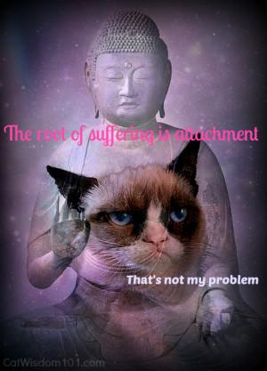 Grumpy Cat Buddha Quote...