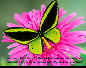 Displaying 14> Images For - Butterfly Quotes About Death...