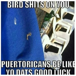 Hispanics and boricuas be like ..