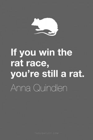 "the rat race, you're still a rat."" ― Anna Quindlen #rat #quote ..."