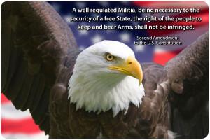 Gun Control and the 2nd Amendment