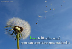 Love-Quotes-Thoughts-love-is-like-the-wind-see-nice-quotes-best-quotes ...