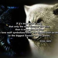 Lone Wolf Quot Aaron Belz...