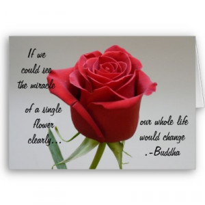 red_rose_valentine_with_buddha_quote_card-p137260195346190566zv2h8_400 ...