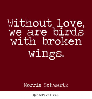 Quotes about love - Without love, we are birds with broken wings.