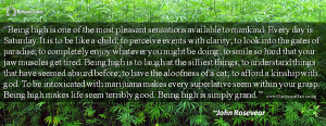 Marijuana Quote by John Rosevear