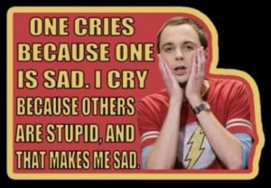 ... bang-theory-pictures-30-pics/attachment/funny-sheldon-cooper-quotes-5