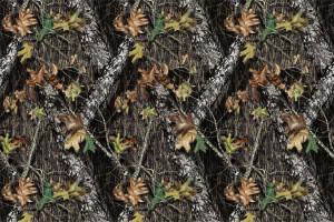 mossy oak Image