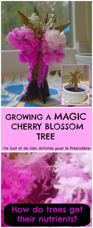 magic crystal cherry blossom tree (Sakura) - Make a magical tree bloom ...
