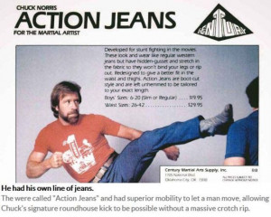 Great Chuck Norris Facts That Are 100 Percent True (10 pics) - Picture ...