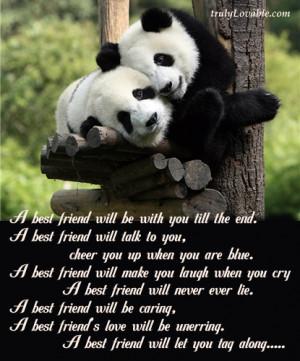 Adorable Friendship Quotes & Pictures.
