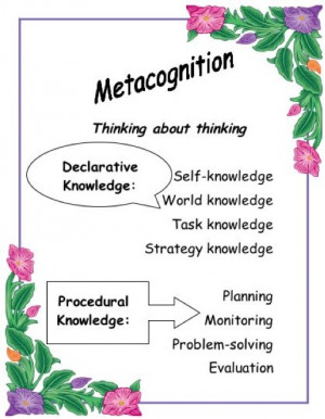 Thinking about Thinking: A Model of Metacognition