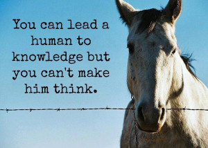 you can lead a human to knowledge
