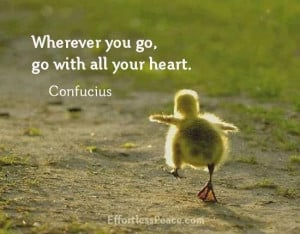 Follow your heart and trust it