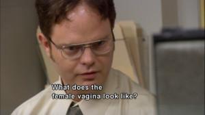 :Dwight Schrute: Hey Toby Toby: Hey Dwight Dwight Schrute ...