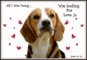 Looking-for-Love.jpg