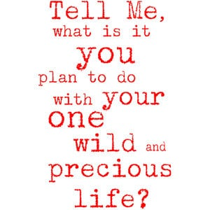 Mary Oliver Inspirational Quote Print 'your one wild and precious life ...