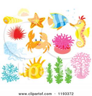 Cartoon Sea Creatures And