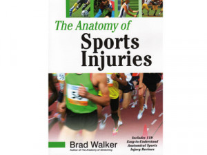 ... common sports injuries and ways to treat them many sports injuries are