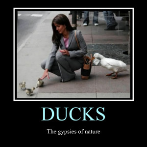 Epic Fail Motivational Poster Ducks motivational poster by