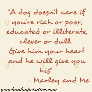 marley me quote c amory s quote colette s quote
