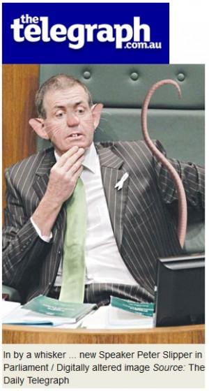 peter slipper rat daily telegraph