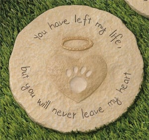 ... relief pain suffering ashes daughter spread ashes loss loss of a pet