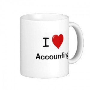 For Accountants Accounting and Finance Teams and Auditors