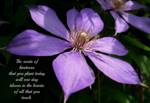 The Seeds Of Kindness That You Plant Today Will One Day Bloom In The ...