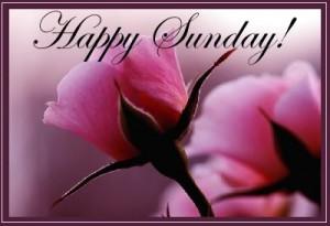 Happy Sunday ...