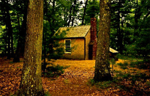 Resources for teaching Thoreau's Essay