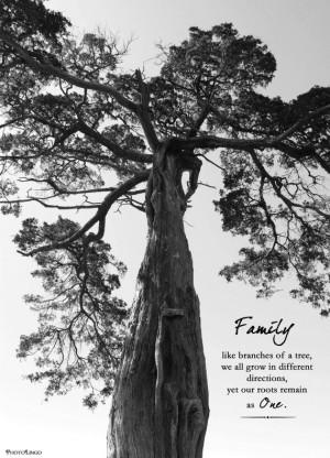 Black and White Nature Photo Print