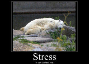 funny-stress-poster1