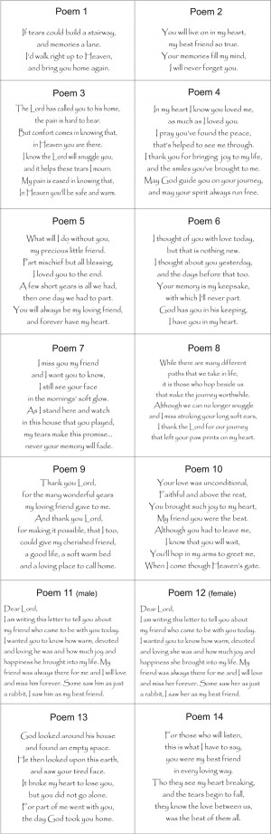 Pet Loss Poems For Rabbits