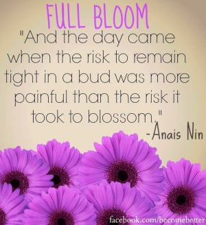 Bloom quote via www.Facebook.com/BecomeBetter and www.BecomeBetter.tv