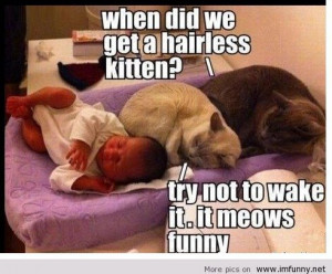 meow cats and baby / Funny Pictures, Funny Quotes – Photos, Quotes ...