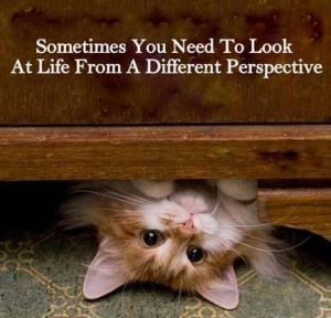 Motivational Monday Quote About Life: Different Perspective #Quotes