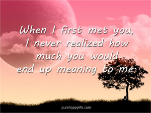 Love Quote: When I first met you, I never realized how much you…