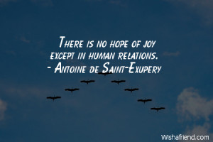 joy-There is no hope of joy except in human relations.